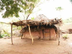 Nicht alle indischen Häuser sehen so aus ;-)