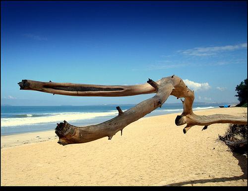 Goa - Anjuna Beach